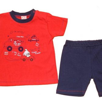 Boys T-shirt & Shorts Set