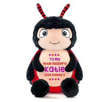 personalised ladybird soft toy