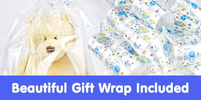 Baby Gift Hampers Baby Tots New Baby Boy Gift Hampers Uk
